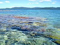 幻の島の海