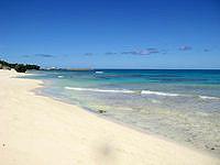 新城島の上地島北岸のビーチ - 桟橋からかなり歩きますがここがおすすめ