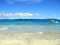 新城島の上地島北岸のビーチ - 手前は浅いですが深い部分はサンゴが豊か