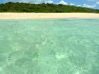 新城島の南の浜/下地側の浜の海の写真