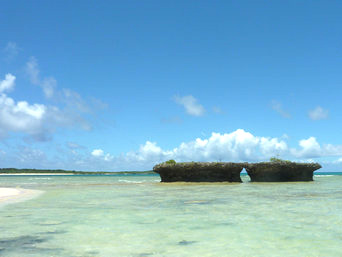 新城島のカモメ岩/地籍図根三角点「上地島西南にあります」