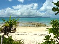 新城島の上地島北岸の海/干潮時の珊瑚礁 - 集落側からの入口