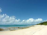 新城島の上地島北岸の海/干潮時の珊瑚礁 - 多くのツアーボートがいますが沖に停泊のみ