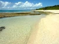 新城島の上地島北岸の海/干潮時の珊瑚礁 - 透明度抜群です
