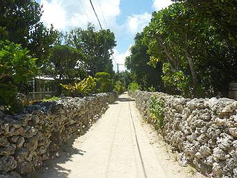 新城島の上地島の集落