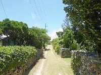新城島の上地島の集落の写真