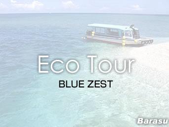 バラスのBLUE ZEST/ブルーゼスト「バラスへの半日ツアーもあるショップ」
