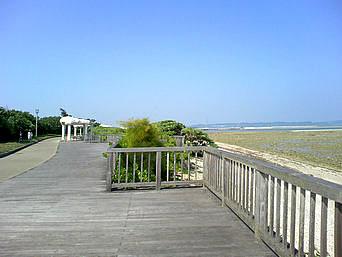 中部の沖縄県総合運動公園「沖縄市の東岸にある公園」