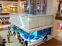中部のイオンモール沖縄ライカム - 巨大水槽は必見