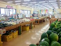 中部のぎのわんゆいマルシェ/宜野湾はごろも市場 - 共同市場はやや狭め