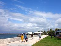 中部の宜野湾マリーナ/フードフレア会場 - 海沿いに公園もあります