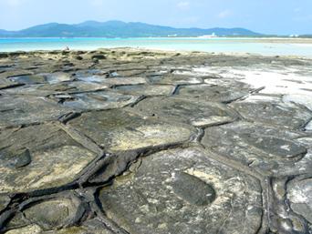 久米奥武島の畳石
