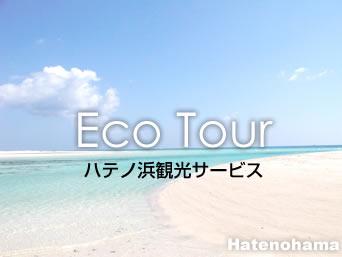 ハテノ浜観光サービス