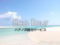 沖縄本島離島 はての浜のハテノ浜観光サービスの写真