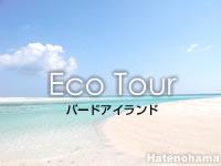 【兼城発はての浜観光・ボートツアー】バードアイランド