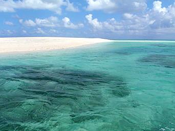 はての浜のはての浜へ行く途中の海「はての浜ツアーはその途中の海もキレイ」