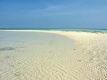 久米奥武島のプチはての浜(畳石)