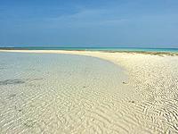 プチはての浜