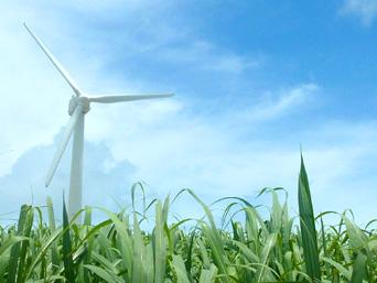 久米奥武島の風車