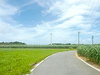 久米奥武島の風車 - オーハ島へ渡る海峡への道の途中