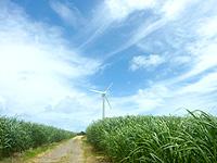 久米奥武島の風車 - 何も無い場所にある風車
