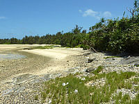 久米奥武島のミニ畳石の写真