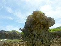 オーハ島のオーハ島東岸 - 岩場が切り立っています
