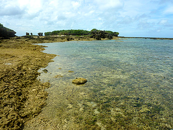 オーハ島のイチュンザ岩/イチュンザ島「奥武島北にある岩というか島」