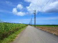 波照間島の波照間周回道路の写真