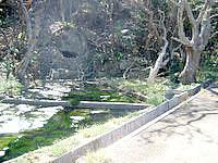 波照間島の下田原城跡/ぶりぶち公園 - 入口近くに貯水池があります