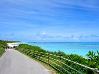 波照間島のニシ浜へと続く道 - 左側に駐車場ができて景色が台無し!