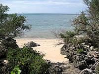 波照間島の浜シタン群落 - 小さなビーチがいくつかある場所です