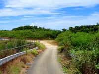 波照間島のペー浜/南浜 - この右の先がビーチ入口です