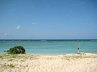 波照間島の浜崎/ニシ浜先 - ニシ浜と浜シタンを結ぶ道の途中から出れます