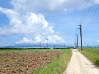 波照間島の可倒式風力発電 - 周回道路の一歩奥にあります