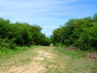 波照間島の毛ビーチ/珊瑚の殻ビーチ/サンゴの浜 - この先の行き止まりの右が入口