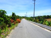 波照間島の波照間絶景ロード - 集落からニシ浜へ向かう道の左側にある!