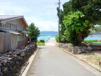 鳩間島の島のメインロード - 港近くだとこんな感じ(瑠璃の脇)