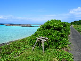 鳩間島の鳩間小中の遊歩道「散策には気持ちいい海」
