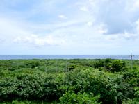 鳩間島の鳩間島物見台 - 物見台から島の北側を望む