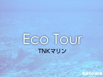 鳩間島のTNKマリン(閉店)「あだなしでは今は別のツアーになっています」