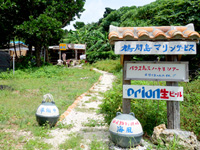 鳩間島の鳩間島マリンサービス/お食事処海風/くぅくぅくぅバー