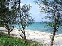 今泊のプライベートビーチ