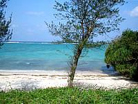 北部の今泊のプライベートビーチ - 独り占めしたくなるビーチです