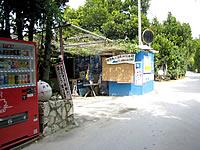 北部の備瀬美ら海貝殻標本館/備瀬崎養殖所