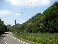 北部のカルスト山/円錐カルスト