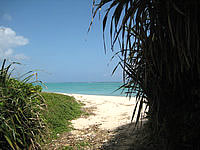 北部の長浜ビーチ - ビーチの入口