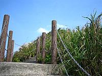 伊江島の城山/タッチュー - 頂上へと至る急な遊歩道