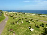 伊江島のリリーフィールド公園内展望台 - 公園入口側のユリ畑を遠くに望む