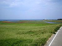 伊江島の伊江島灯台 - 周辺は緑豊かなんですけど・・・